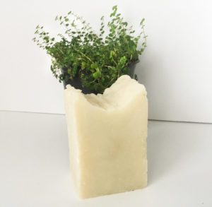 A rectangle bar of Amiqui soap standing vertically with a small plant behind the bar surrounded by a white backdrop.